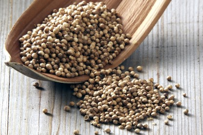 7 Surprising Coriander Uses for Your Health: From Fighting Cholesterol to Treating Diabetes and More