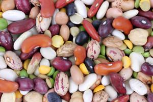 high-fiber beans