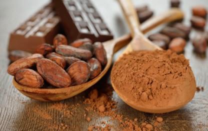 Surprising Cocoa Benefits Include Heart Health and Prediabetes Improvement