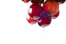 grape seed extract benefits