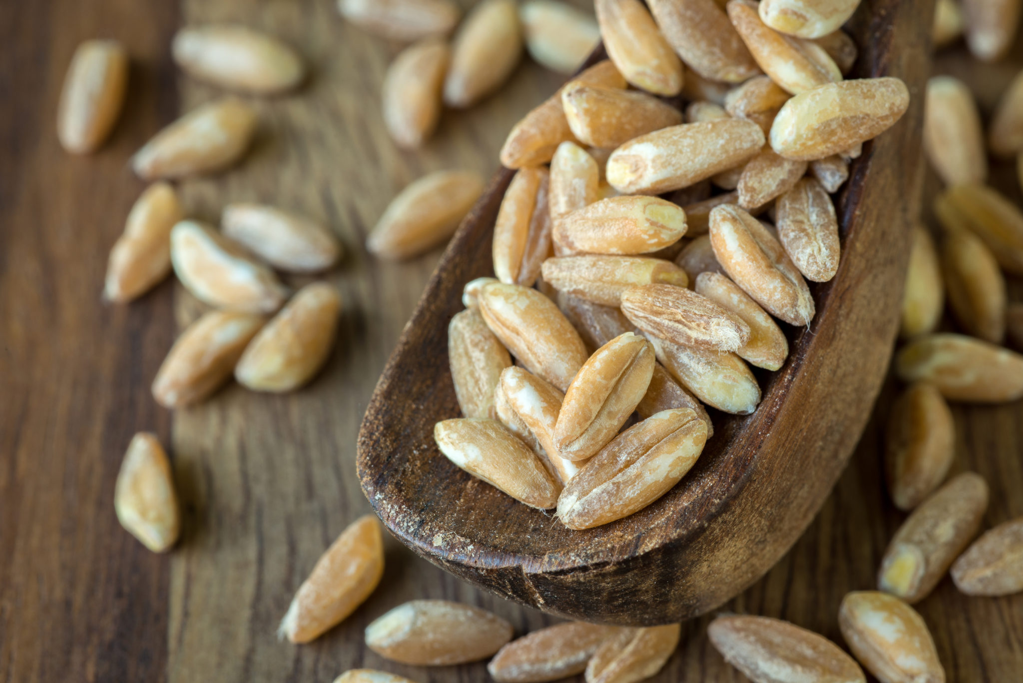 Farro Benefits: Here's Why This Whole