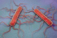 listeria symptoms