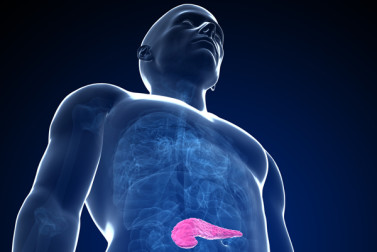 Pancreas Pain: What's Behind It?