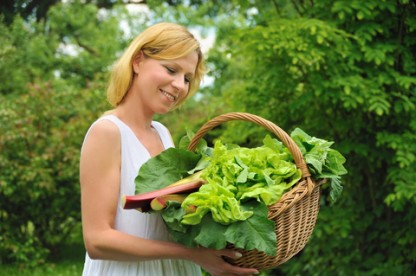 5 Organic Garden Fertilizer Options: How To Have a Healthy, Flourishing Garden Without the Chemicals