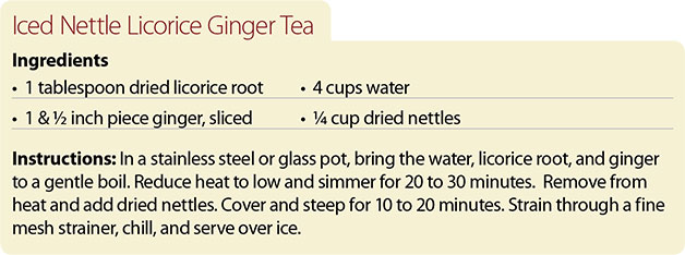Recipe-for-Iced-Nettle-Licorice-Ginger-Tea
