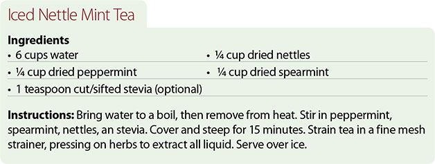 Recipe-for-Iced-Nettle-Mint-Tea