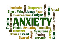 Anxiety Definition vs. Stress Definition: A Simple Explanation of How These Responses Differ