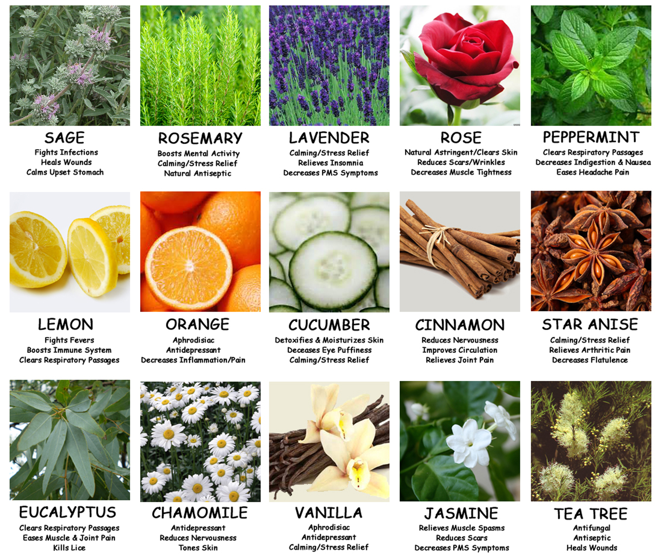What are some good aromatherapy reference charts?