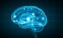 Neuroplasticity: Your Brain's Marvelous Ability to Reengineer Itself