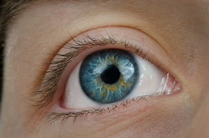 common eye disease and conditions