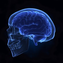 Concussions and Traumatic Brain Injuries: Treatments and Recovery