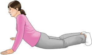 core exercises modified push-up