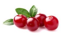 Cranberries: The Healthy Holiday Antioxidant