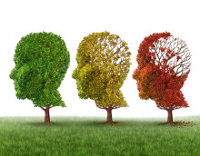 Dementia Stages: What to Expect