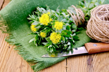 Natural Depression Remedies: Rhodiola Benefits Mild to Moderate Depression