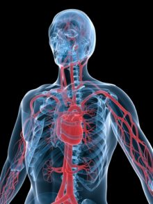 How a VAD Can Save Your Heart