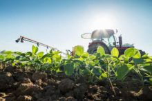 Alarming New Evidence Links Pesticides Used in GMOs and Cancer