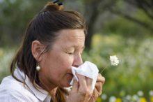 Managing Hay Fever