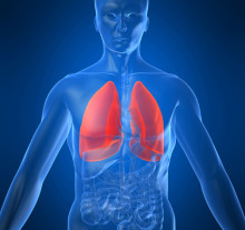Learn These Basic Health Facts About Lungs—and Breathe Easier