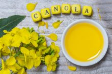 Is Canola Oil Bad for You? Be Skeptical About Extremist Claims