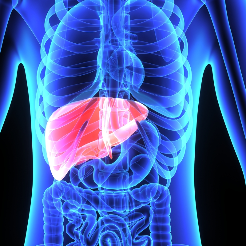 Liver Pain What It Could Mean University Health News