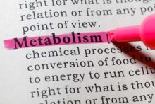 Metabolism: What You Need to Know About Your Body's Energy Processing