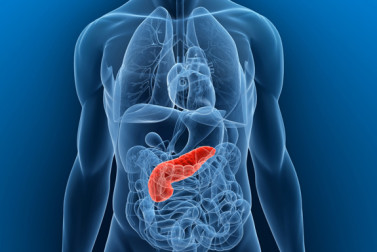 Pancreatitis: Understanding the Causes and Symptoms