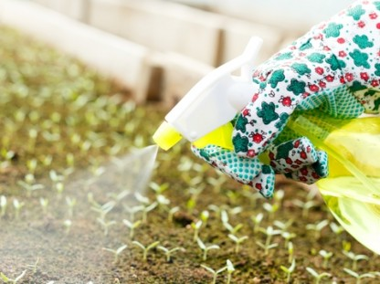 The Alarming Link Between Pesticides and Autism