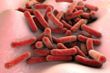 """Tuberculosis: Despite Progress, It's """"Not Yet a Disease of the Past"""""""