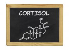 What Is Cortisol and What Does It Have to Do with Stress?