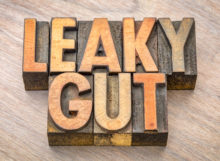 leaky gut test