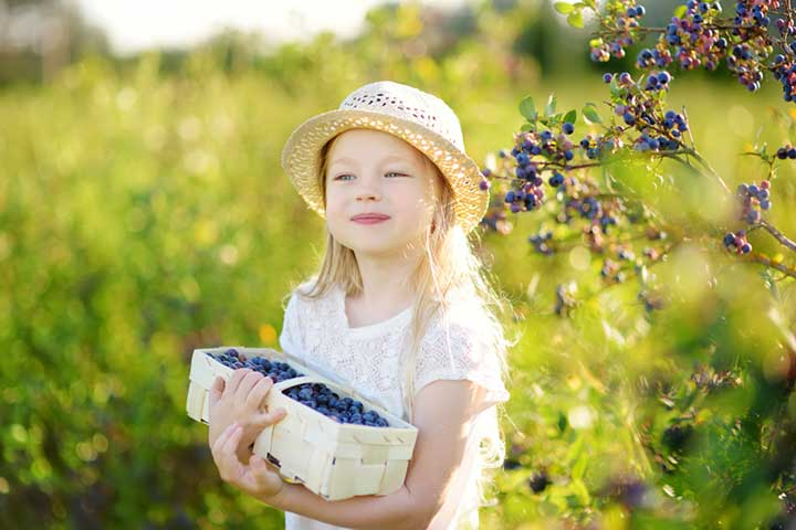 Child holding a basket of organic produce