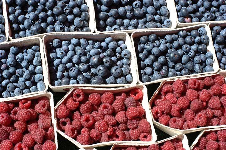 health benefits of raspberries and blueberries